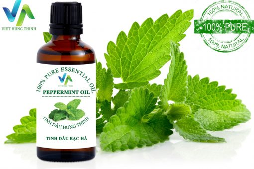 tinh-dau-bac-ha-peppermint-oil