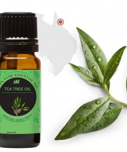 tea-tree-oil-tinh-dau-tram-tra