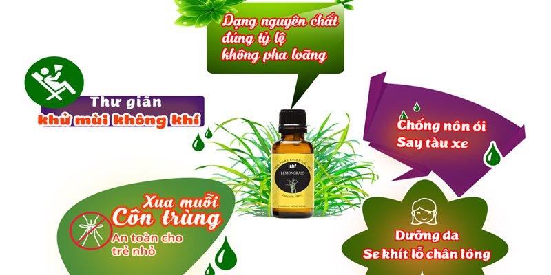 banner-web-cong-dung-sa-chanh